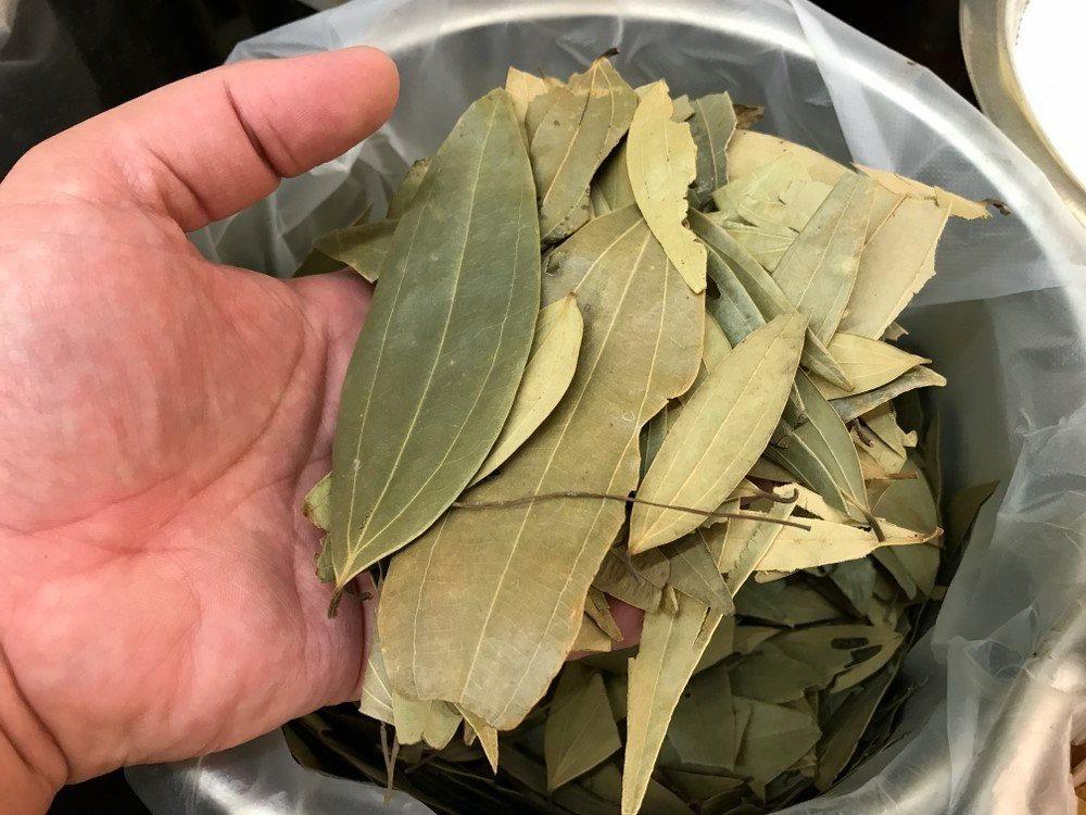 Defne Yaprağı, Çayı, Faydaları? Defne Yaprağı Yakmak?